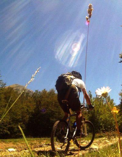 Mountain Bike nel Parco del Pollino