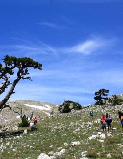 Trekking sulle cime del Pollino