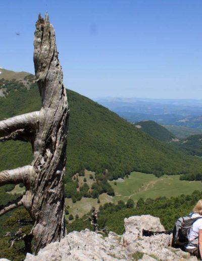 Un bel panorama godibile da una delle cime del Pollino